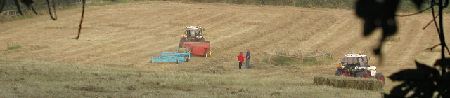 Haymaking Conference